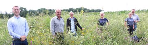 Die Münsteraner Landwirtschaft stärkt Biodiversität mit Blühstreifen